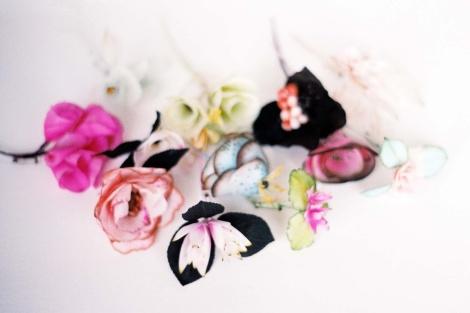 Fleurs3D(5)-Janv12-1