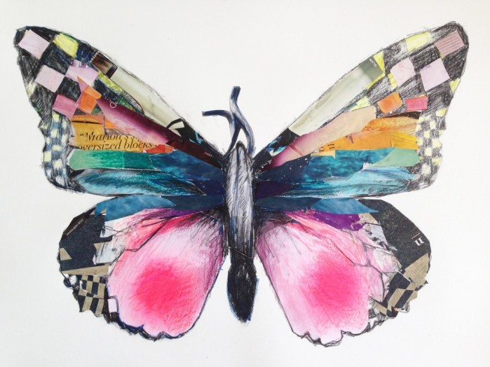 Lepidoptera-1024x768